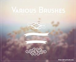 {Various Brushes}