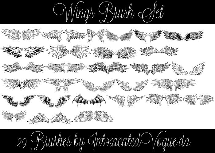 Wings Brush Set