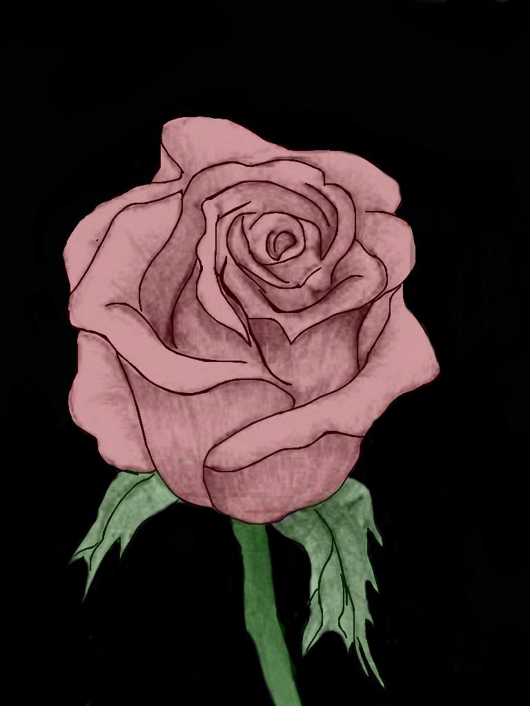 rose by XxKILLERGIRLXX
