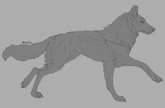 Free to use canine lineart (psd and clip studio)