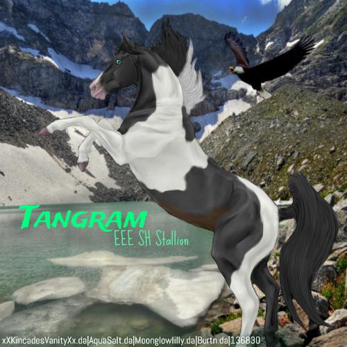Tangram HEE