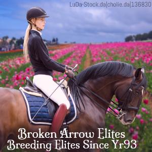 Broken Arrow Elites HEE by MClaireB