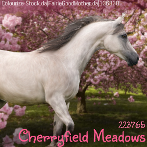 Cherryfield Meadows HEE by MClaireB