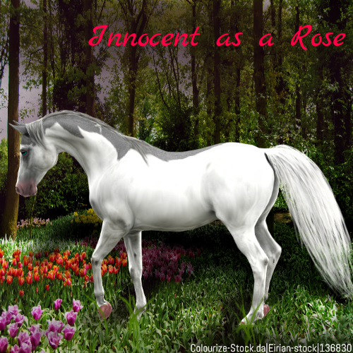 Innocent As A Rose HEE by MClaireB
