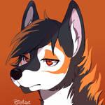 Icon Fox Koi