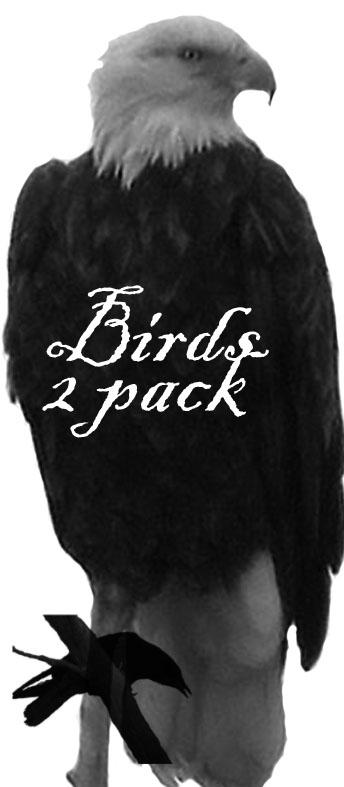 2 pack of birds by Aphoticbeauty