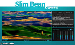 Slim Bean VlC Media Player Skin