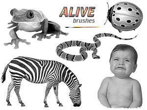 PS Brushes - Alive by par-me