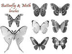 PS Brushes - Butterflies