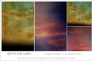 008 - Sky's The Limit