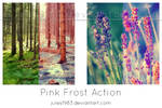 PS: Pink Frost Action
