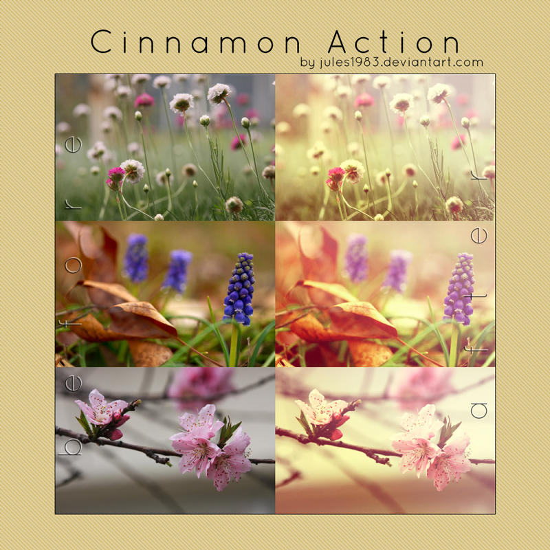 PS: Cinnamon Action by Jules1983