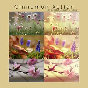 PS: Cinnamon Action