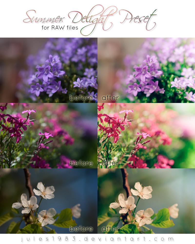 LR: Summer Delight Preset [RAW] by Jules1983