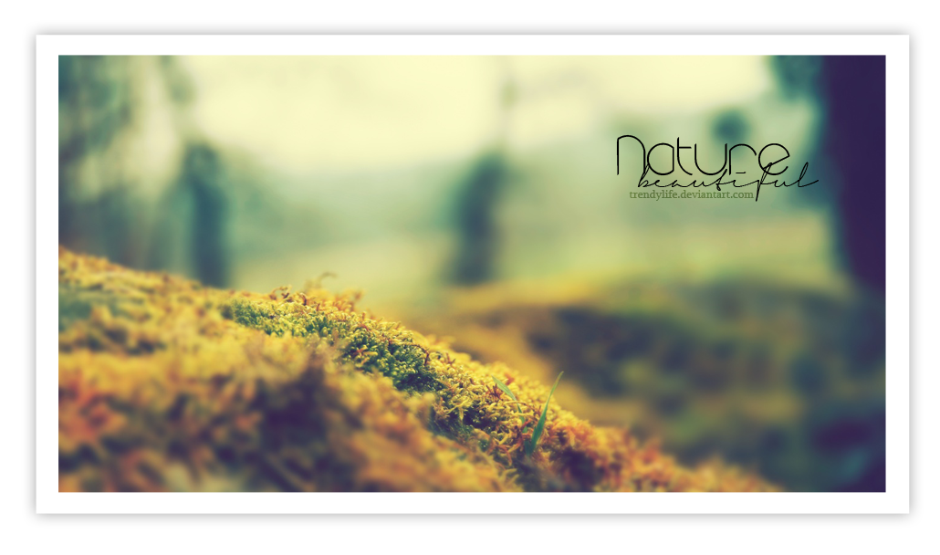 Wallpaper Nature beautiful by TrendyLife