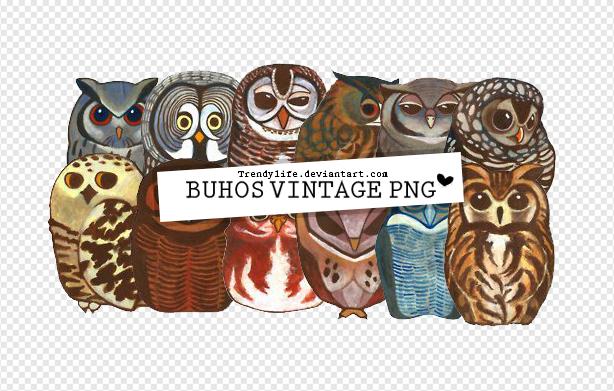 Buhos Png TrendyLife