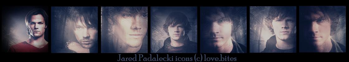 Jared Padalecki 6 icons pack by lovewillbiteyou