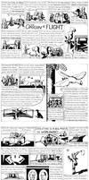 6: The Origin of Flight