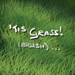 'Tis Grass - brush EDIT by DarkDragon774