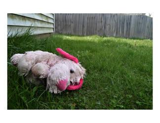 Lost Puppy by linziexdiane