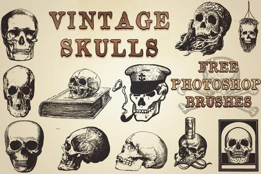 Vintage Skulls brushes for photoshop (free!)