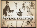 Weird Vintage Skeletons- free photoshop brushes