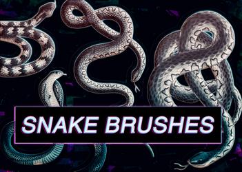 Snake brushes for photoshop - free
