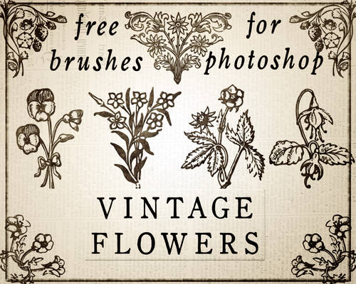 Vintage rustic floral brushes for photoshop - free