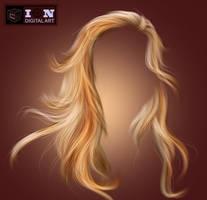 PSD HAIR 2 by erool