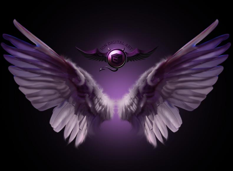 Purple Wings by erool on DeviantArt