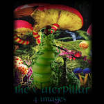 the Caterpillar -4 image pack by Aegean-Prince