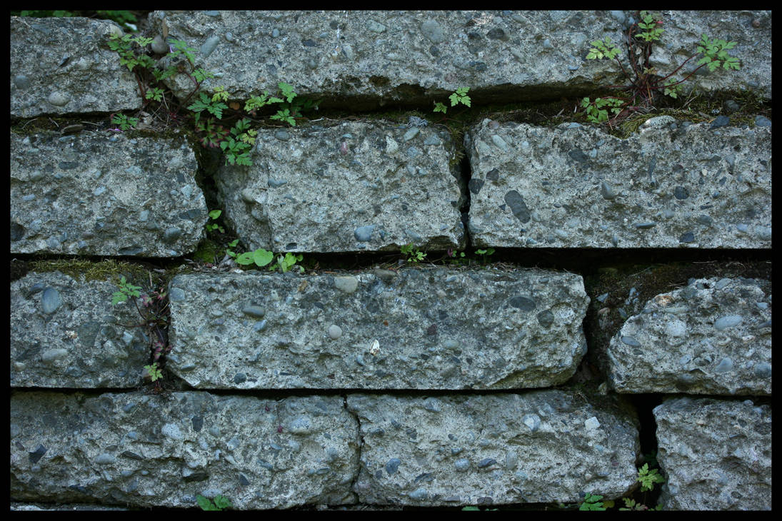 Brick Tile Texture by Maxidius