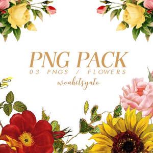 PNG PACK OO1 + FLOWERS