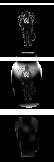 Alan Walker Start Orb V3.0 by HemaAras