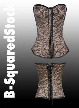 Corset 2 Front and Back PSD