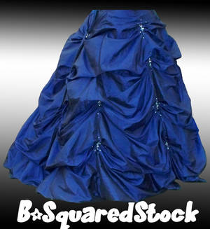 Blue Skirt Back PSD