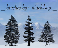 Pine Tree Brushes