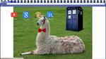 Doctor Llama Chrome Theme