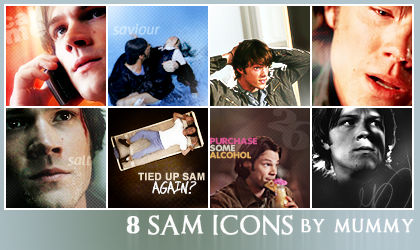 8 Sam icons :1: