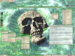 DigiSkull