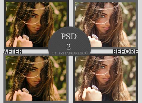 PSD#2 - yzhandrexoc