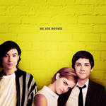 +Book (The Perks of Being a Wallflower)