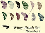 Butter Wings Brush Set - PS7