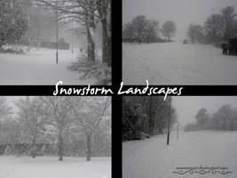 Snowstorm Landscape Pack