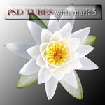 psd flowers with mask 5