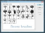 flower brushes set 13