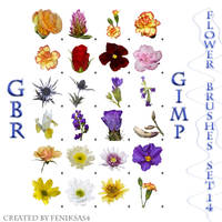 gimp flower brushes set 14