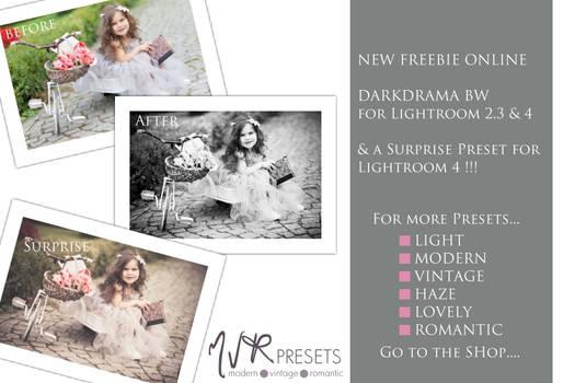 Dark Drama BW ~ Lightroom Presets