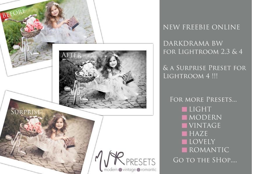Dark Drama BW ~ Lightroom Presets by Nellkas-art