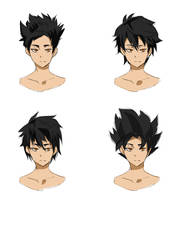 Hiko Design Hair Choices?